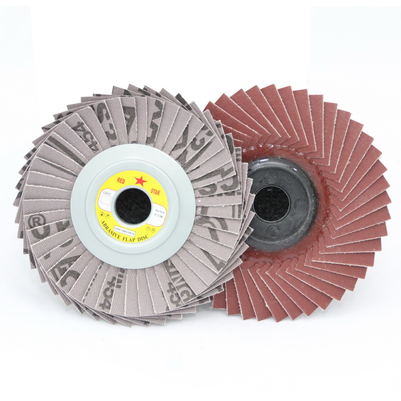 Flexible Flap Disc (CS310)