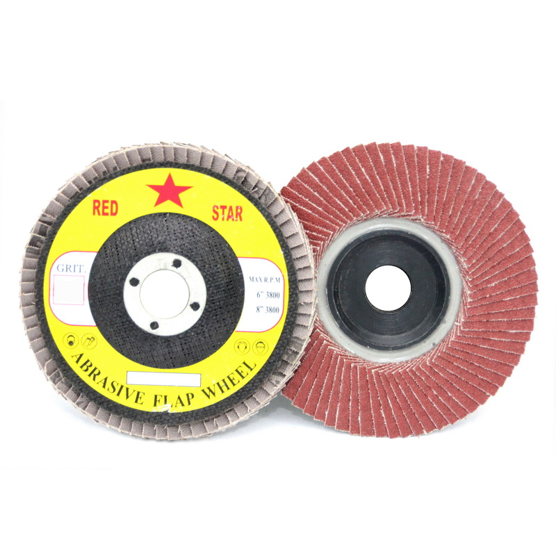 Rigid Flap Disc (CS310)